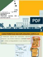 3.1 as Áreas Rurais III Al - Ppais Carat. Agric. 20-21