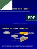 Les deux sources du cholestérol
