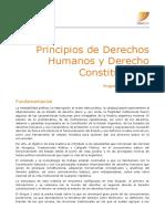 Programa_Derecho_2_2020