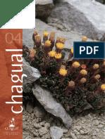 Revista-chagual-4