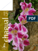 Revista-chagual-15