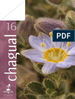 Revista-chagual-16