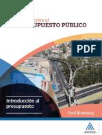 introduccion al presupuesto publico