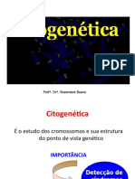aula3_citogenética_num.manha
