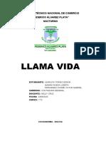 mision y vision - analisis foda
