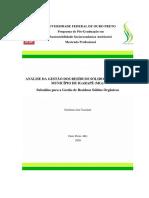 Dissertação_AnáliseGestãoResíduos