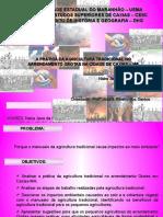 Agricultura tradicional e Meio Ambiente