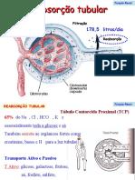 2 - Função renal2