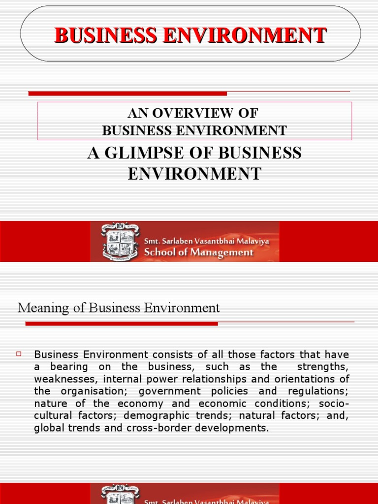 research paper on business environment