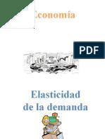 Elasticidad