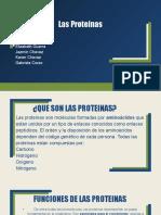 Las Proteínas 2[Autoguardado] (3)