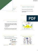 2. Regulación de digestión y absorción-ASmaterial