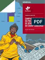 campagne-sismique-du-projet-de-développement-du-champ-sangomar---fiche-technique