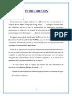 Rapport de Stage Dr Guella_210412_115530