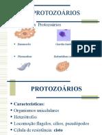 PROTOZOÁRIOS- Giardia e Entamoeba