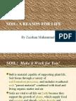 zeeshan soil presentation - Soil