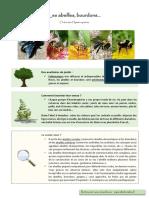 Auxiliaires et pollinisateurs