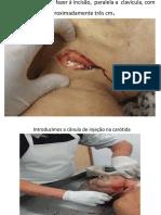 TANATOPRAXIA COMPLETA . (1)