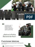 Fuerzas Policiales