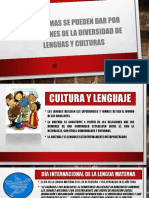 PROBLEMAS SE PUEDEN DAR POR CUESTIONES DE LA DIVERSIDAD DE LENGUAS Y CULTURAS