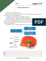 Aula 11 - Sistema Nervoso II