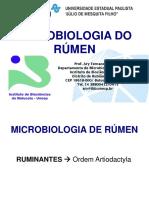 Aula Microbiol Rumen