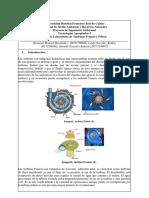 Guía laboratorio Turbinas- tecno 2