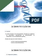 Aula sobre Ácidos Nucleicos -