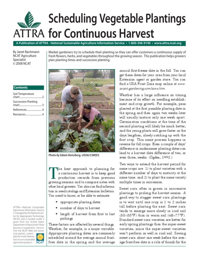 Continuousharvest Vegetables Tomato