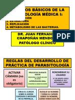 TEORÍA 01