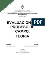 Teoria de Proceso de Campo.