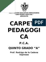 CARPETA PEDAGÓGICA 2009g