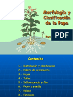 15-Morfologia y Sistemat Rene