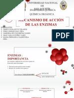 Mecanismo de acción de las enzimas (2) (1)