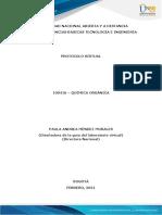 Anexo 4 - Protocolo virtual (2)