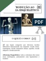 36. Introdução ao sistema esquelético (Portugués) (Presentación) autor Pontifícia Universidade Católica de Goiás