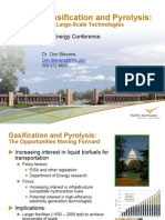 Biomass Gasification and Pyrolysis 2010
