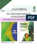 3 Aula - Tamb- Leg - Remotas2020 - Florestas - Pmfs e Queimadas