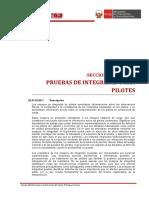 02.01.02.06 Pruebas de Integridad para Pilotes 4