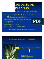 TAXONOMIA DE PLANTAS