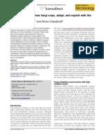Dadachova  Ionizing radiation and Fungi  CuuOpinMicro 2008