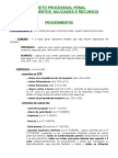RESUMO - Direito Processual Penal - Procedimentos, Nulidades e Recursos - Roberto Ceschin