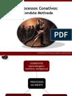 Processos.conativos.1