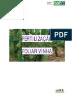 Fertilização Foliar Vinha