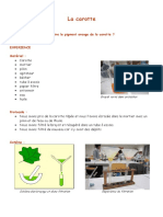 1_Extraction_pigment_carotte-2