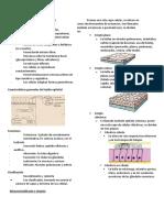 Tejido Epitelial - S1 - Histología
