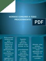 pp teoria del proceso 2 normas comunes a todo procedimiento primera parte