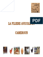 Presentation-M-Ottou-Fouda-IPAVIC