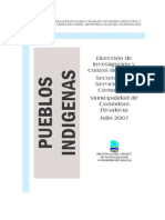 informe final de pueblod indigenas