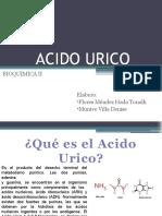 diapositivas-ACIDO URICO